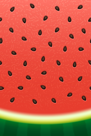 Watermelon texture background with seeds. Vector illustration