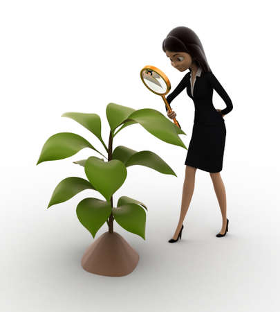 examine: 3d woman examine plant of tree concept on white background, front angle view