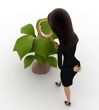 to examine: 3d woman examine plant of tree concept on white background,  top  angle view