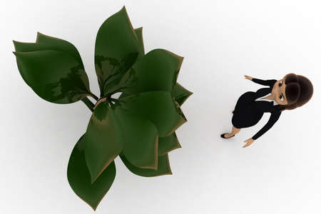 top angle view: woman looking at big plant concept  on white background - 3d rendering, top angle view