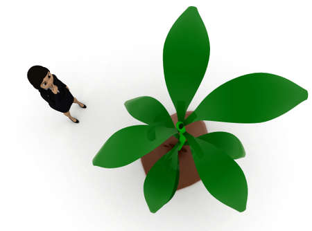 plant stand: 3d woman  looking at  plant concept  in white isolated background , top angle view