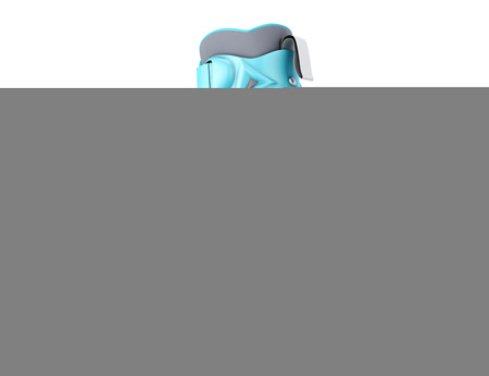 rollerblades: One roller skate isolated on white background. 3d illustration.