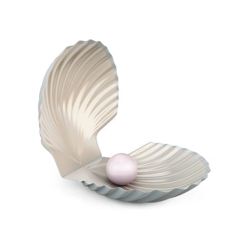 perlas: Cáscara de la perla aislado en el fondo blanco. Las 3D.