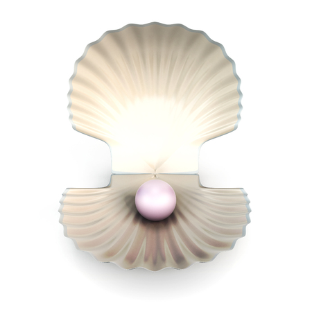 perl: Shell pearl isolated on white background. 3d render image.