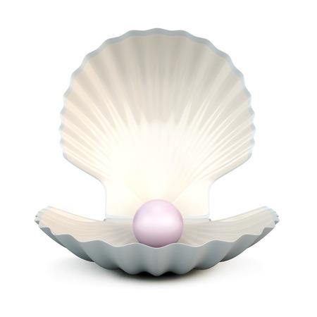 almeja: Cáscara de la perla aislado en el fondo blanco. Ilustración 3D.