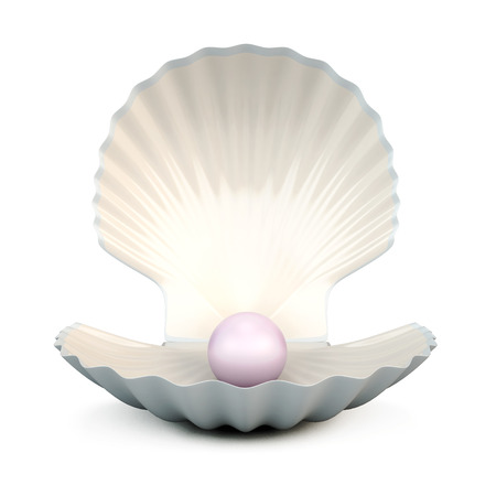Shell pearl isolated on white background. 3d illustration. Stok Fotoğraf