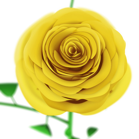 expanded: Yellow rose close up isolated on white background. 3d render image.