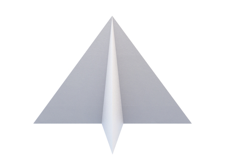 Paper airplane isolated on white background. 3d rendering.