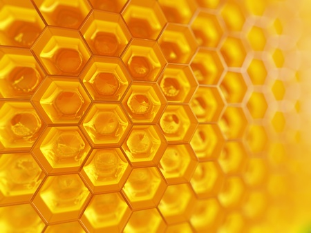 abejas panal: Honeycomb.