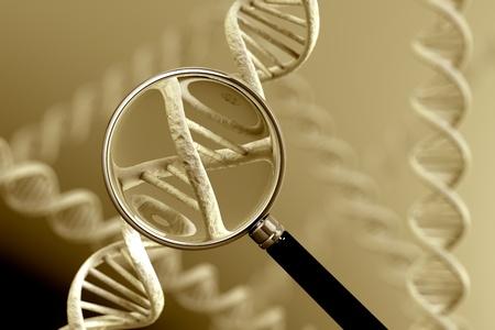 Eine Lupe Fokussierung auf einen Abschnitt einer DNA-Strang. Standard-Bild - 18244563