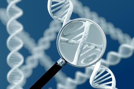 researches: A magnifying glass focussing on a section of a DNA strand.