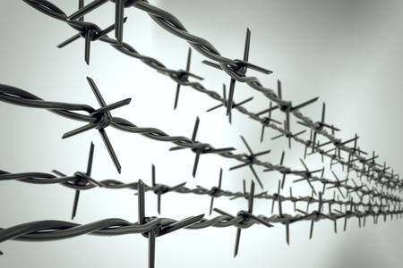 barb wire isolated: Five strands of new barbed wire forming top of fence on blurred background.