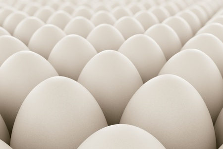 Image of white eggs. Perfect for anything related to healthy food, easters, eggs production and food industry in geneneral.