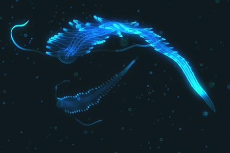 Fascinerende bioluminescent schepsel drijvend op donkere water van de oceaan. Polychaet Tomopteris.