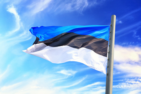 Flag of Estonia against the background of the blue sky