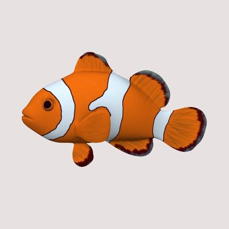 Rendu 3D de poisson de l'anémone Banque d'images - 12892526