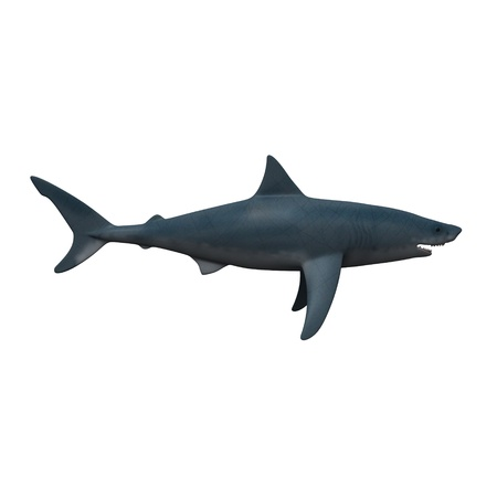 3d render of shark fish photo