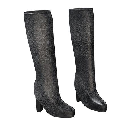 gum boots: 3d render of gum boots  Stock Photo