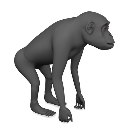 3d render of chimpanzee monkey  photo