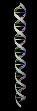 genetic information: 3d render of DNA (genetic information) Stock Photo