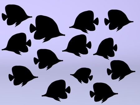 3d render of sea fishes photo