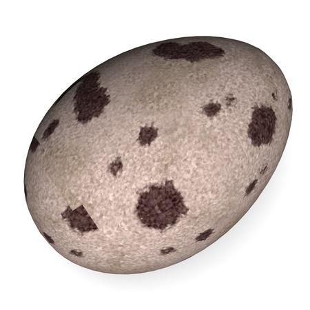3d render of quail egg