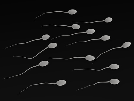 aparato reproductor: 3d de espermatozoides humanos Foto de archivo