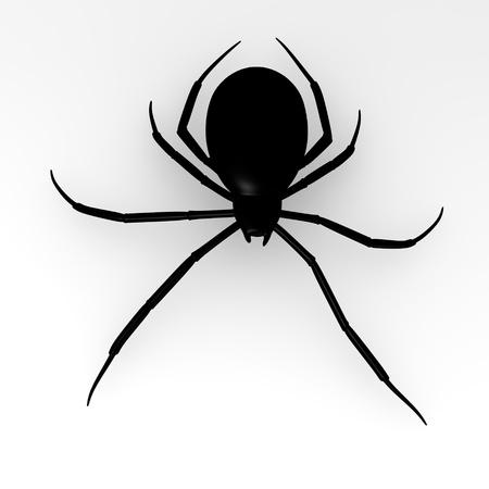 latrodectus: 3d render of common spider  Stock Photo