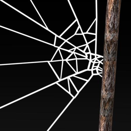 3D render van spinnenweb