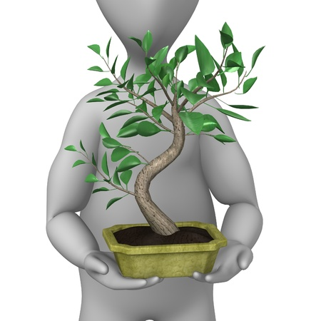 3d render of cartoon character with bonsai photo
