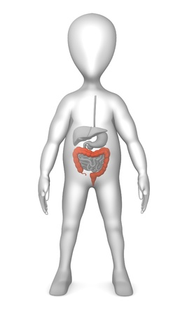 3d render of cartoon character with digestive system  photo