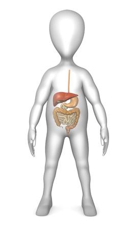 intestino grueso: 3d rinden de personaje de dibujos animados con el sistema digestivo