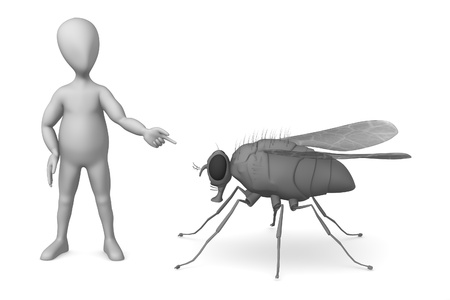 musca domestica: 3d render of cartoon character with fly