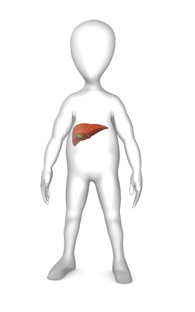 3d render of cartoon character with livers Stock Photo - 12944759