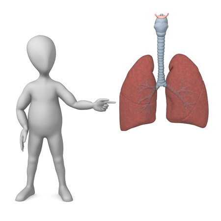 3d rendre of cartoon character with lungs photo