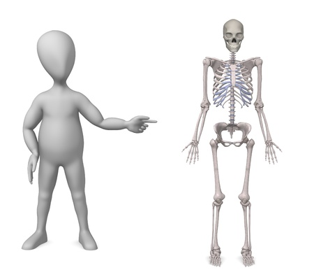 humamoid: 3d render of cartoon character with male skeleton