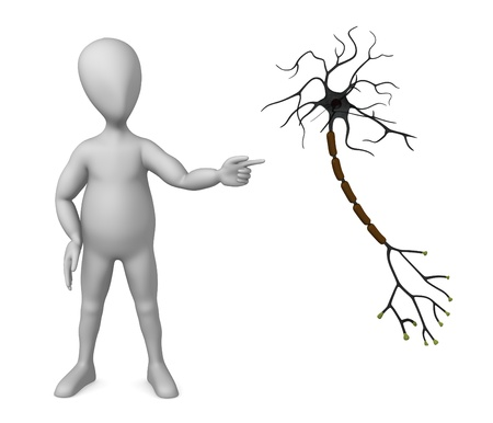 3d render of cartoon character with neuron photo