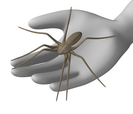 3d render of cartoon character with spider photo