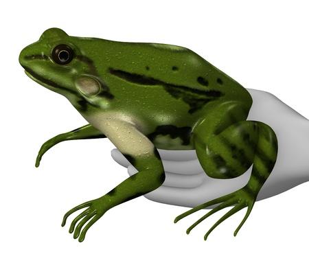 rana: 3d render of cartoon character with rana esculenta (jumper frog) Stock Photo