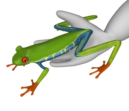 red eyed tree frog: 3d render of cartoon character with red-eyed frog  Stock Photo