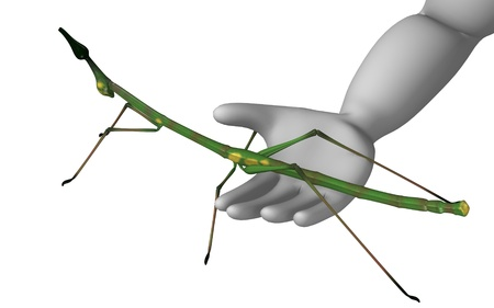 3d render of cartoon character with stick insect Stock Photo - 12968981