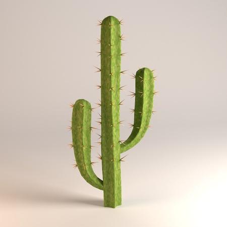 saguaro: saguaro Stock Photo