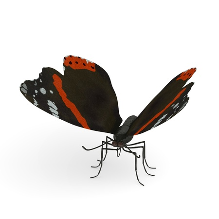 lepidopteran: 3d render of vanessa atlanta  Stock Photo
