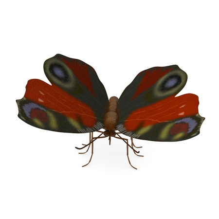 inachis: 3d render of inachis io