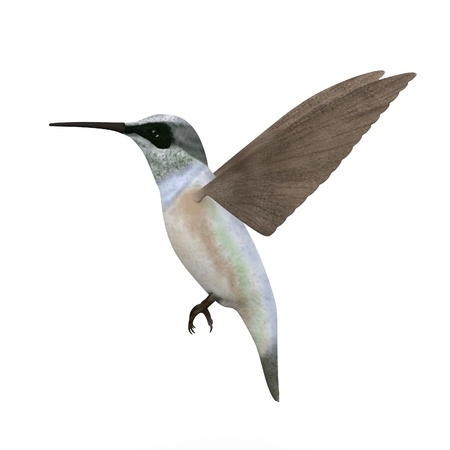 smallest: 3d render of colibri bird Stock Photo