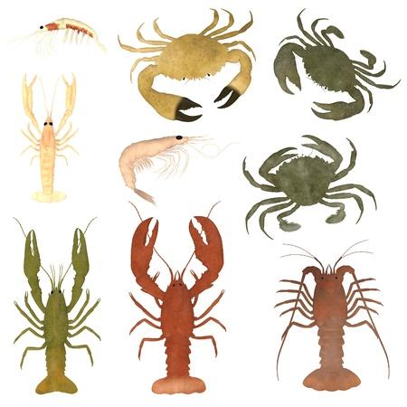 crustacean: 3d render of crustacean animals