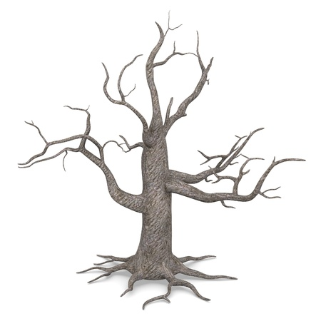 3d render of dead tree Stock Photo - 13735870