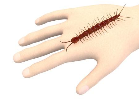 centipede: 3d render of hand with centipede