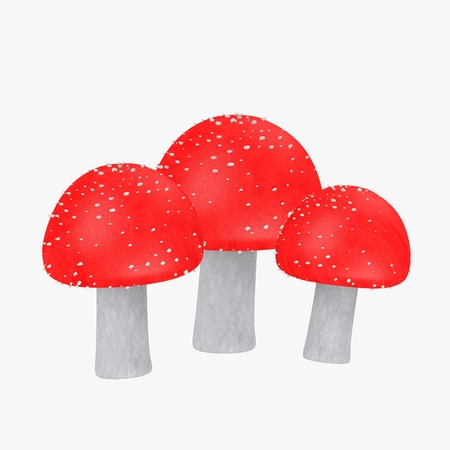 3d render of amanita muscaria Stock Photo - 13743738