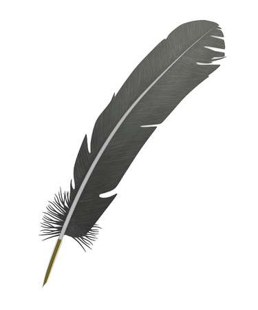 caligraphy: 3d render of bird quill